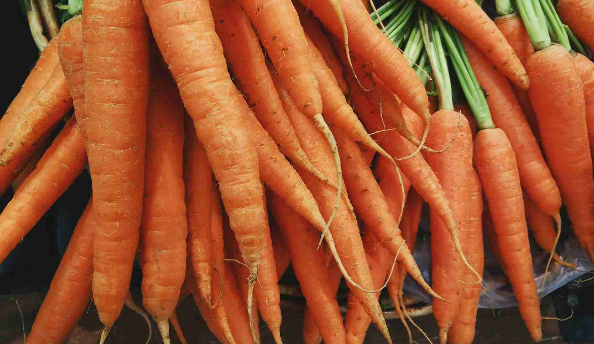Best Carrots benefits for health(2020)