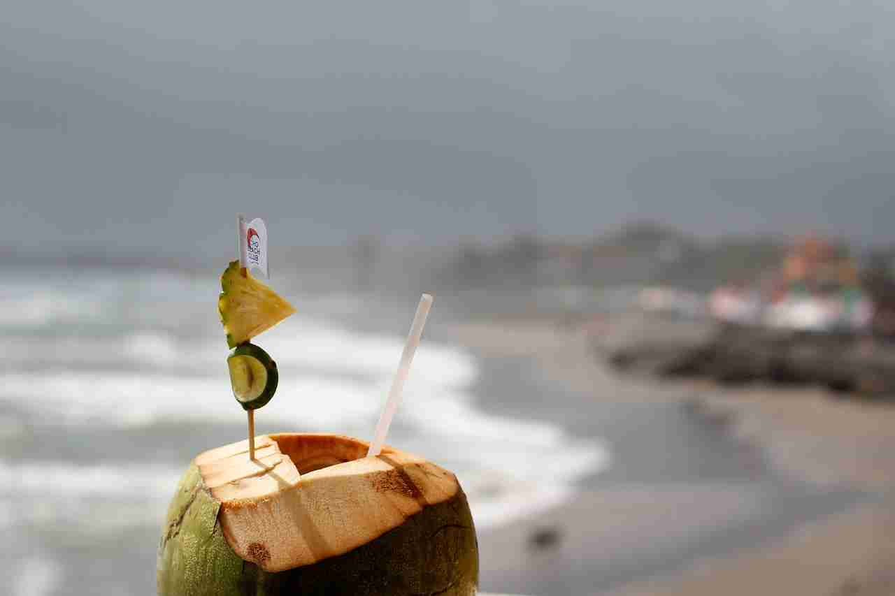 Benefits of Coconut Water (2020)
