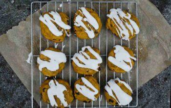 pumpkin chocolate chip cookies recipe